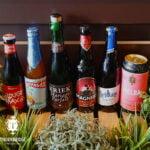 Fruity-Beers