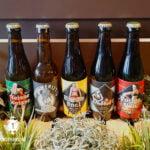 Naughty-Beers